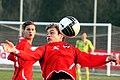 Gerald Peinsipp (SKN St. Pölten), Austria U-19 (04).jpg