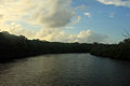Gfp-florida-everglades-national-park-river-channel.jpg