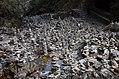 Ghorepaani Ghandruk Trail 5.jpg