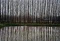 Gilan - Abkenar - panoramio.jpg
