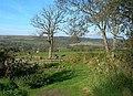Girvan Valley View - geograph.org.uk - 594638.jpg