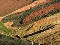 Glen Dhoo. Isle of Man - geograph.org.uk - 32898.jpg