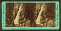 Glen Ellis Falls, White Mountains, N.H, by Adams, S. F., b. 1844.png