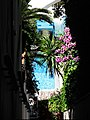 Glipmse into a Capri villa (31729497680).jpg