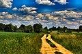 Gmina Narew, Poland - panoramio (108).jpg