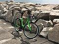 Gobee Bike in Sunny Bay 15-07-2017.jpg