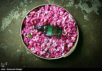 Výroba Golabu v Qamsaru - Kashan 20.jpg