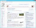 Google Chrome 22 on Windows 8.png