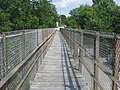 Goose Creek Foot Bridge, looking eastward.jpg