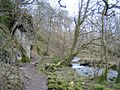 Gordale Beck - geograph.org.uk - 224.jpg