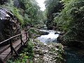 Gorges de Vintgar, Eslovènia (agost 2013) - panoramio (3).jpg