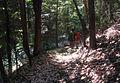 Grayback Mountain (15637486098).jpg