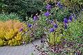 Green Spring Gardens in October (22373085708).jpg
