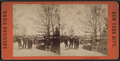 Group in Central Park, from Robert N. Dennis collection of stereoscopic views 3.png