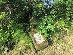 Hřbitov Zlíchov 43.jpg