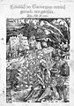 H. von Gersdorf, Feldtbuch der Wundartzney, Wellcome L0020469.jpg