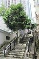 HK 上環 Sheung Wan 四方街 Square Street June 2019 IX2 06.jpg