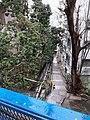 HK ML 半山區 Mid-levels 寶雲道 Bowen Road February 2020 SS2 12.jpg