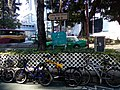 HK Sheung Shui 龍琛路 Lung Sum Avenue bike parking n trees Jan 2017 Lnv2.jpg