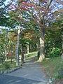 Hakone Ashinoko lake dsc05418.jpg
