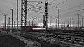 Halle humpyard DSC07815 PtrQs.jpg