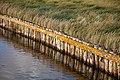 Hallig Hooge Nordsee (50731844888).jpg