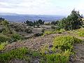 Hauts plateaux d'Ethiopie-Région Amhara (14).jpg