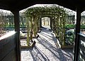 Herb garden, Stafford Castle. - geograph.org.uk - 1136253.jpg