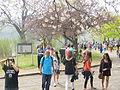 High Park, Toronto - Laslovarga (14).JPG