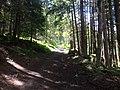 Hiking Trail near Chamonix, France - panoramio (2).jpg