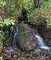Hillside stream (6237299546).jpg