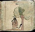 Hindi Manuscript 844 Wellcome L0024546.jpg