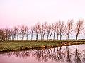 Holland at sunrise (15565674844).jpg