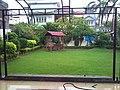 Home garden. - panoramio.jpg