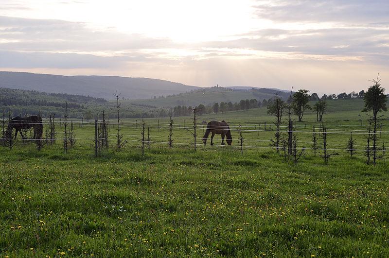 Hora Svaté Kateřiny - Pohled z Nové vsi