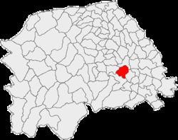 Vị trí của Horodniceni