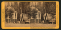 House over the Stump of the original Big Tree, Calaveras County, by Lawrence & Houseworth.png