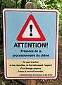 Howald, danger processionnaires du chêne.jpg