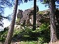 Hrad Vrsatec - panoramio.jpg