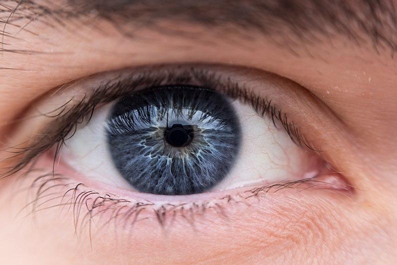 Human eye iris 5.jpg