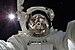 ISS-32 American EVA b3 Aki Hoshide.jpg