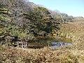 Ibarakawacho, Higashiomi, Shiga Prefecture 527-0216, Japan - panoramio (39).jpg