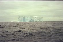 Iceberg - Brainsfield Stright.jpg