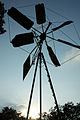 India - TN - 11-01 - The Farm - 27 - old windmill (5445445912).jpg