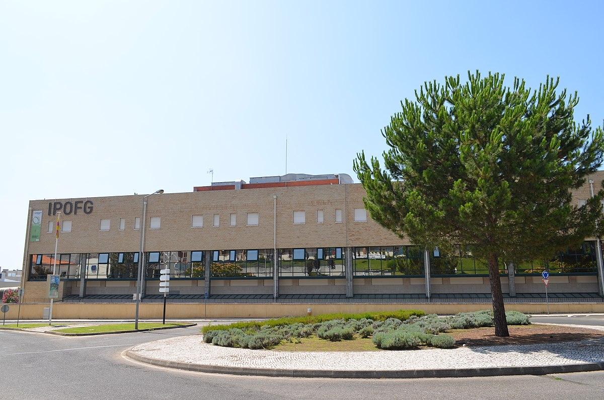 Mafalda cruz ipo coimbra