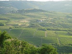Istria3