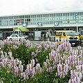 JR紀勢線 新宮駅前のハナトラノオの花 Obedient plant in front of Shingū station 2012.8.22 - panoramio.jpg
