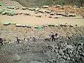 Jade Mine 2.jpg