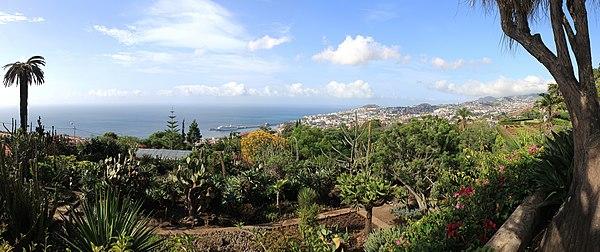 Funchal seen from the Jardim Botânico da Madeira