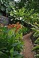 Jardim Botânico da Madeira DSC 0362 (14719781033).jpg